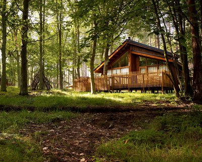 Thorpe Lodges in Thetford Forest